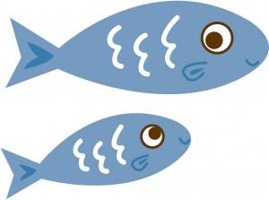 小魚を海岸で拾う