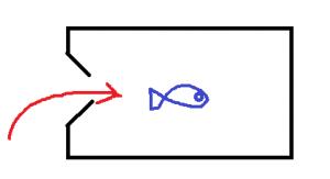 タイビン、セルビン、魚とり網、魚とりカゴ、魚キラー