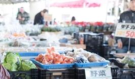 50円で買える野菜、果物