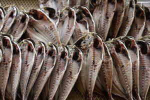 魚の切り身が3枚で100円