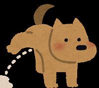 犬のおしっこが野草にかかる
