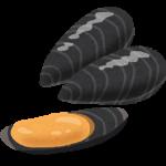 イガイはムール貝、沿岸部で大量に採れる