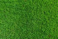 原っぱ、芝生、公園、河川敷で投網の練習をする